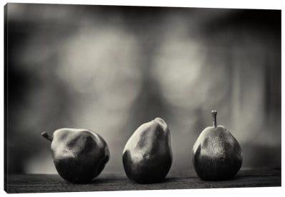 Three Red Pears on the Precipice Canvas Art Print