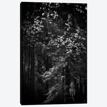 First There is No Mountain Canvas Print #13909} by Geoffrey Ansel Agrons Art Print