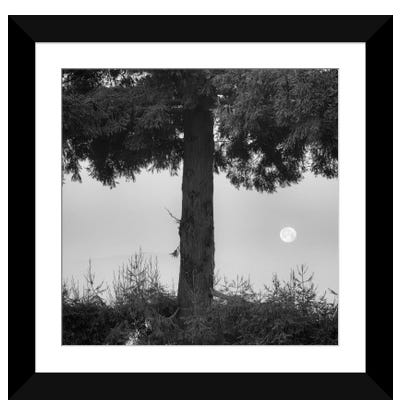 Alice Moving Under Skies Framed Art Print