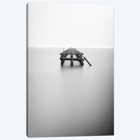 Infinite Jest Canvas Print #13919} by Geoffrey Ansel Agrons Canvas Wall Art