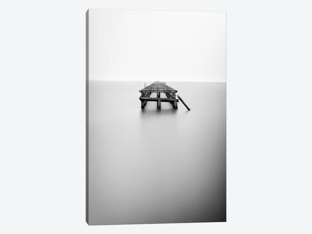 Infinite Jest by Geoffrey Ansel Agrons 1-piece Canvas Artwork