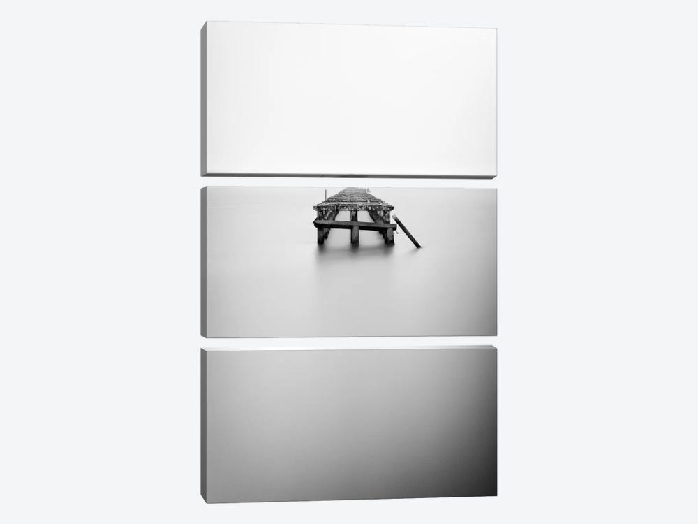 Infinite Jest by Geoffrey Ansel Agrons 3-piece Canvas Wall Art