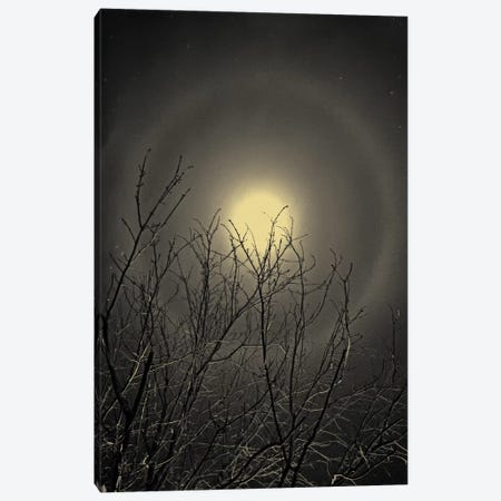 The Moon is the North Wind's Cookie Canvas Print #13927} by Geoffrey Ansel Agrons Canvas Art