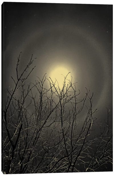 The Moon is the North Wind's Cookie Canvas Art Print