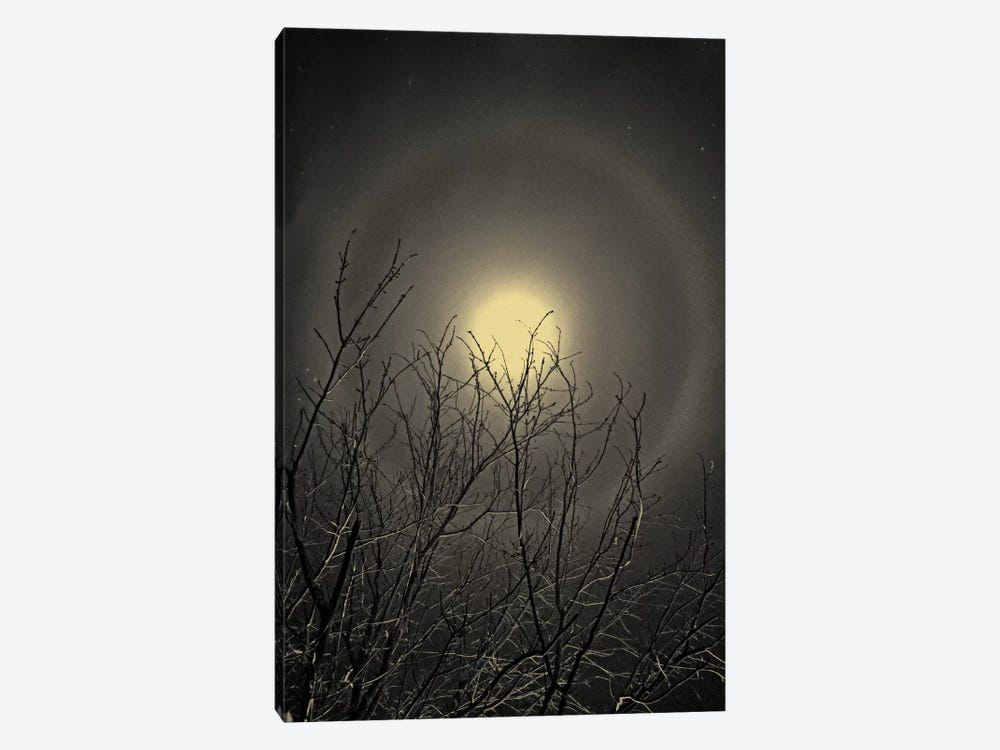 The Moon is the North Wind's Cookie by Geoffrey Ansel Agrons 1-piece Art Print