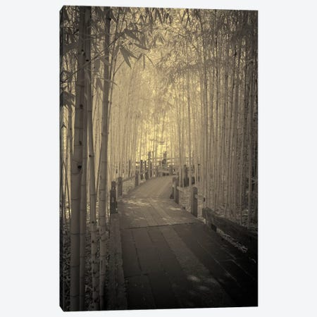 All to myself Alone Canvas Print #13931} by Geoffrey Ansel Agrons Canvas Artwork