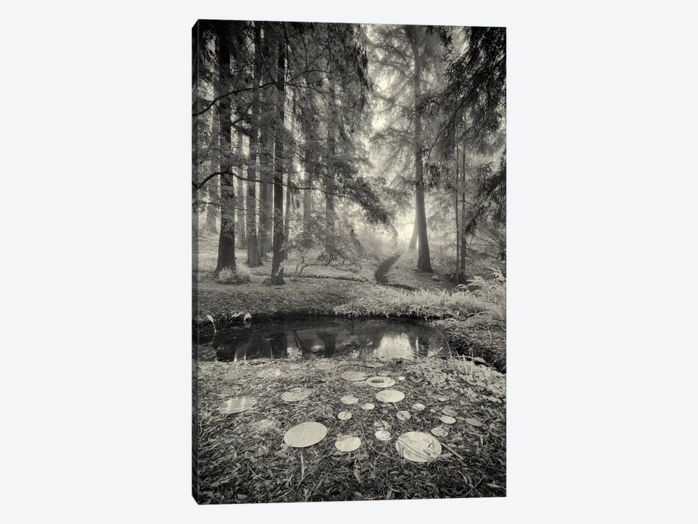 Specular Echoes by Geoffrey Ansel Agrons 1-piece Art Print