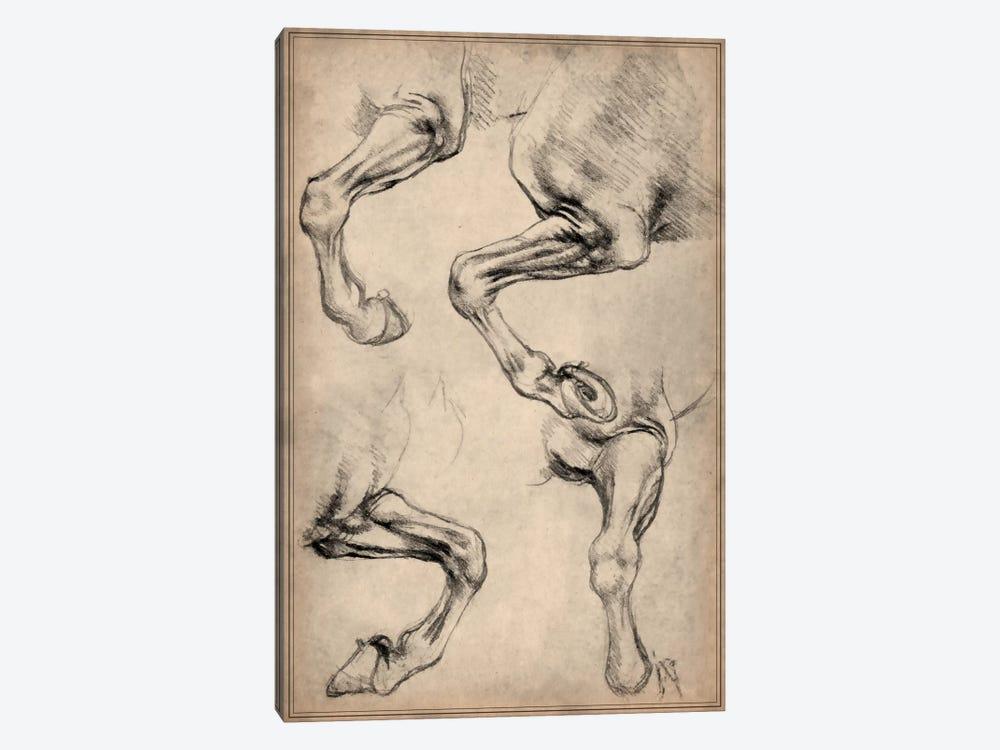 Leonardo's Horse by Leonardo da Vinci 1-piece Canvas Artwork