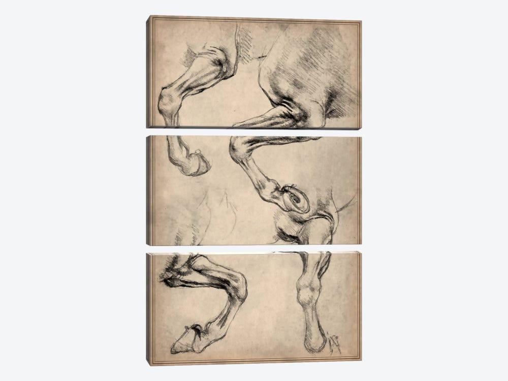 Leonardo's Horse by Leonardo da Vinci 3-piece Canvas Art