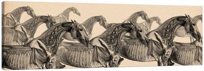 Race Horse Anatomy Collage Canvas Art Print