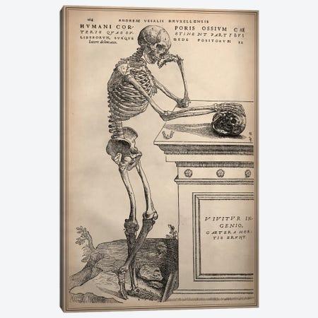 De Humani Corporis Fabrica Skeleton Standing Canvas Print #13985} by Vesalius Canvas Artwork