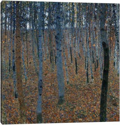Buchenwald 1 (Beech Grove 1) Canvas Art Print