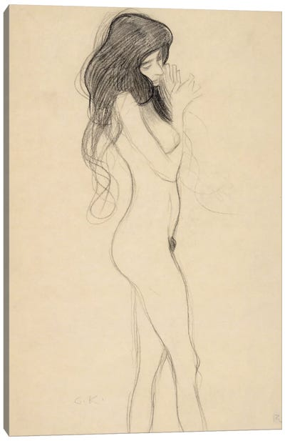 Stehender Frauenakt nach rechts (Standing Female Nude from the Front) Canvas Print #14046