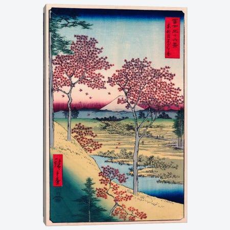 Toto Meguro Yuhigaoka (Yuhigaoka at Meguro in Edo) Canvas Print #1408} by Utagawa Hiroshige Canvas Artwork