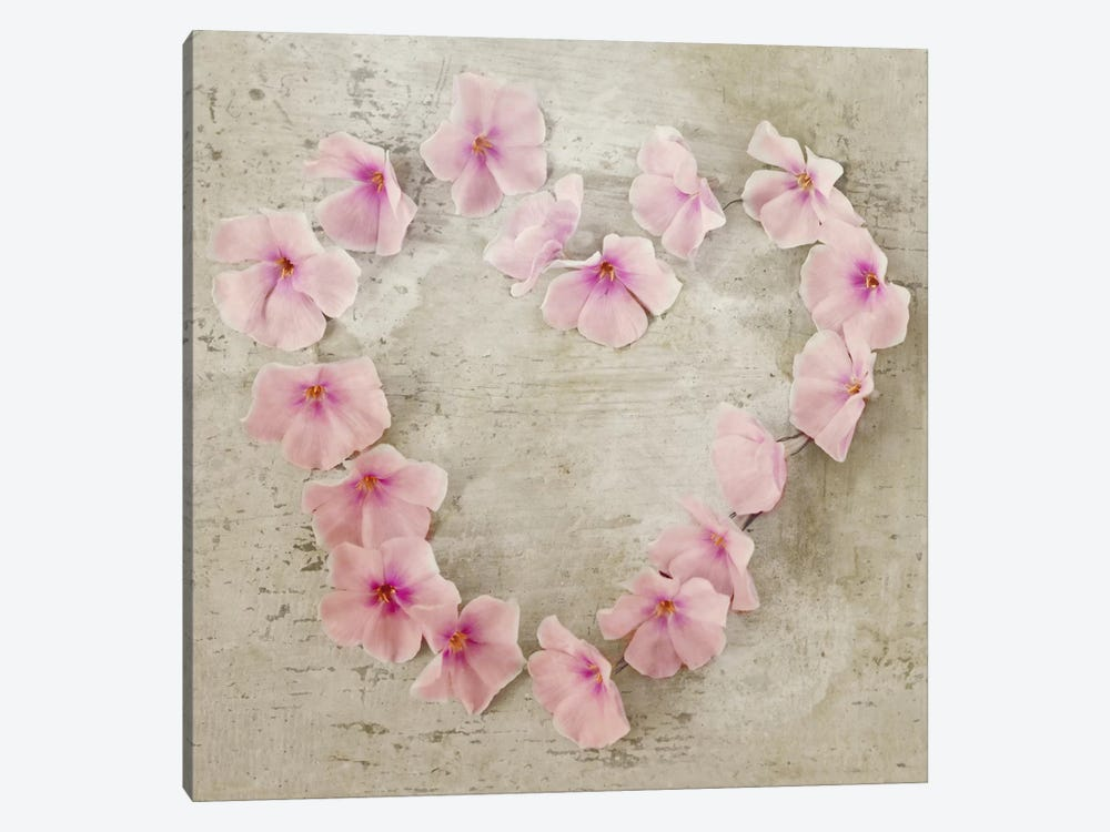 Roseheart Pink by Symposium Design 1-piece Canvas Art