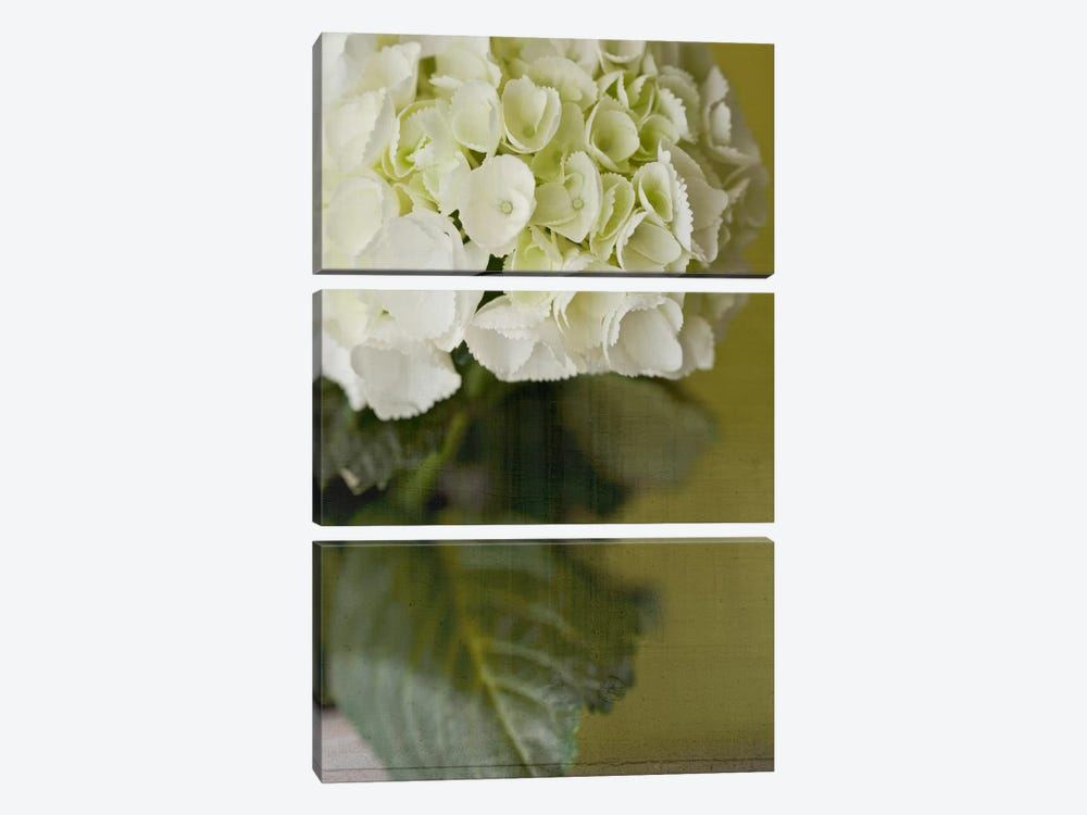Hydrangea II by Symposium Design 3-piece Canvas Print