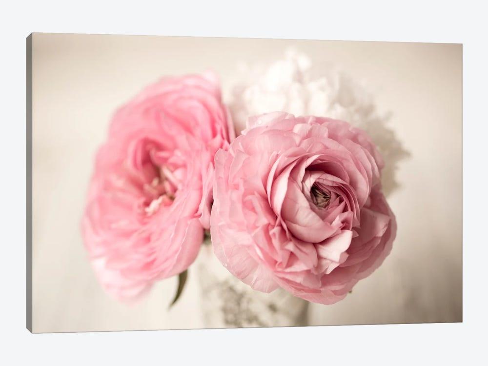 Ranuncula Pink Vase by Symposium Design 1-piece Canvas Art
