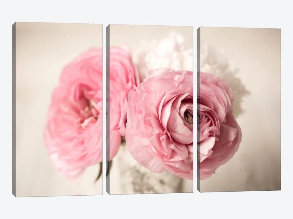 Ranuncula Pink Vase by Symposium Design 3-piece Canvas Art