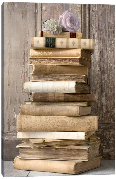 Books I Canvas Art Print