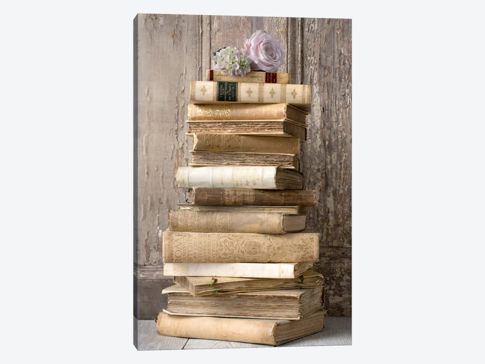 Books I by Symposium Design 1-piece Canvas Art Print