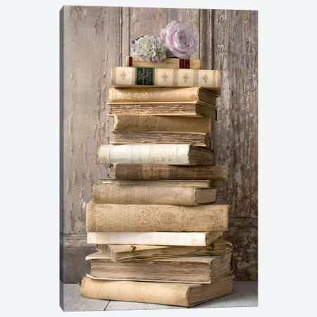 Books I 3-Piece Canvas #14224} by Symposium Design Canvas Art