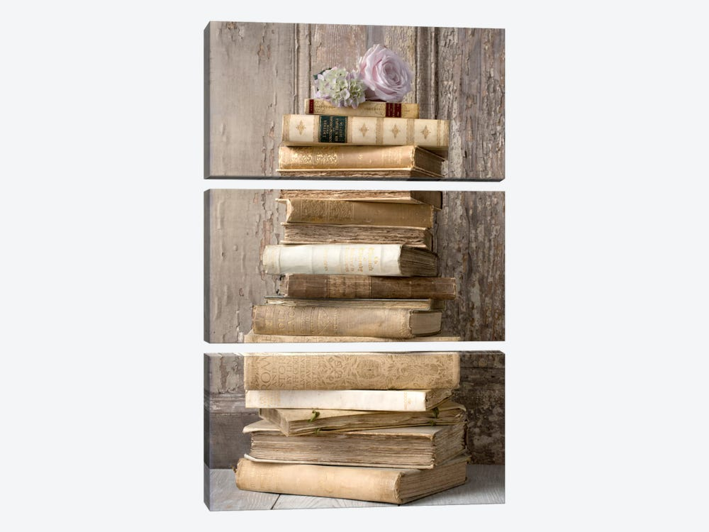 Books I by Symposium Design 3-piece Art Print