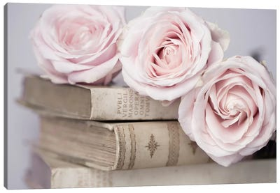 Vintage Roses Canvas Art Print