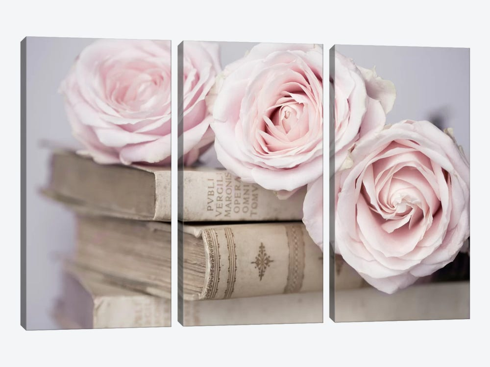 Vintage Roses 3-piece Canvas Art