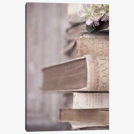 Books Cameo I Canvas Print #14226} by Symposium Design Canvas Artwork