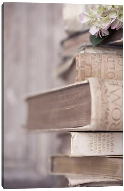 Books Cameo I Canvas Art Print