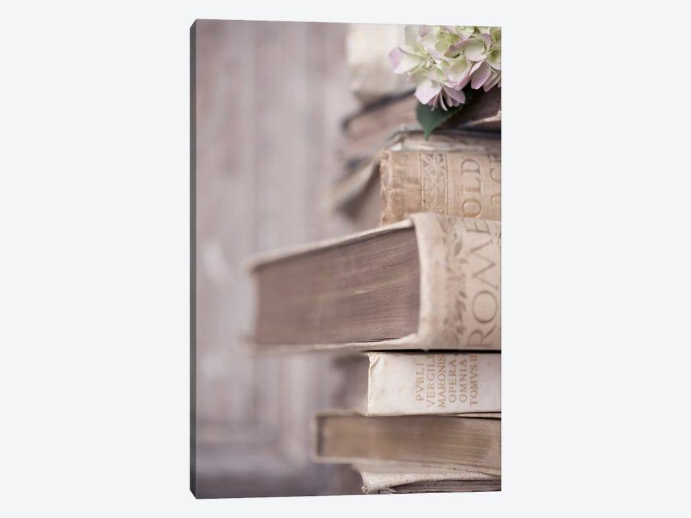 Books Cameo I by Symposium Design 1-piece Art Print