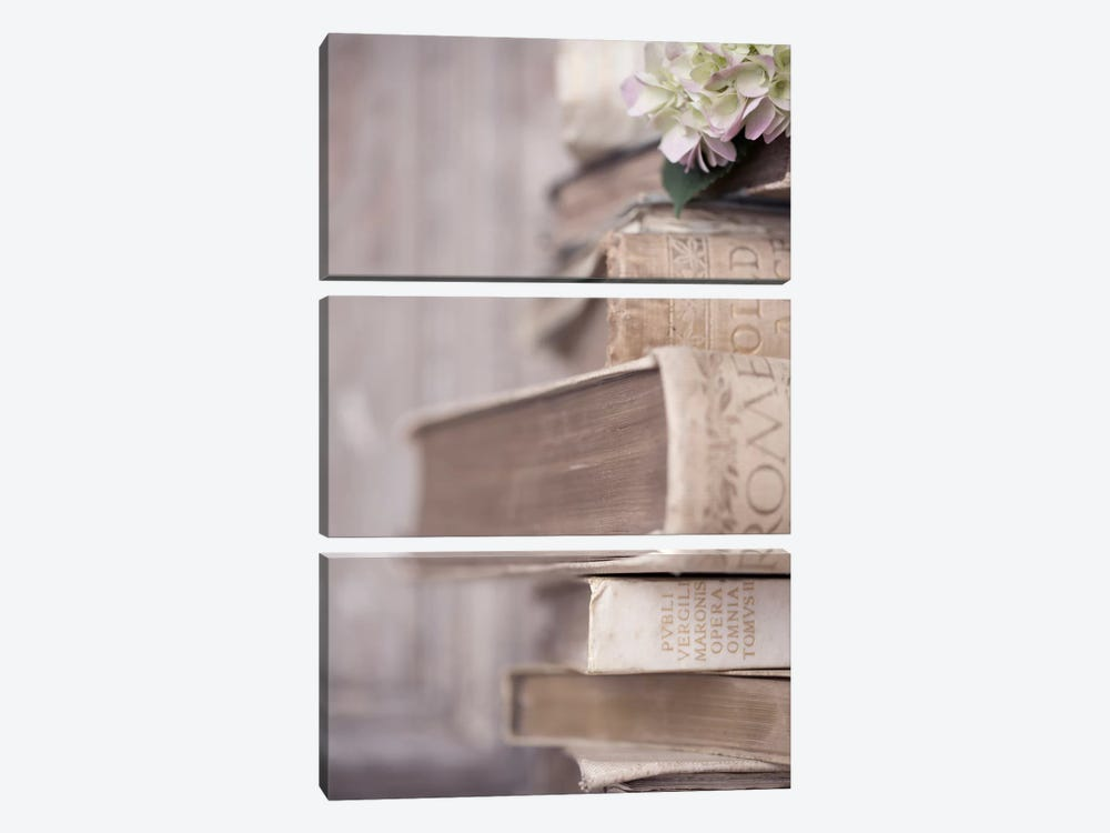 Books Cameo I by Symposium Design 3-piece Art Print