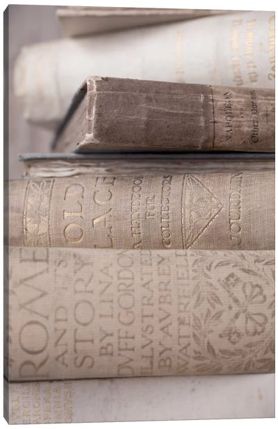 Books Cameo II Canvas Print #14227