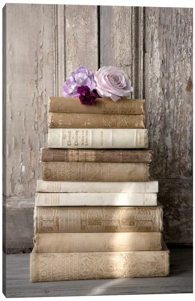 Books III Canvas Art Print