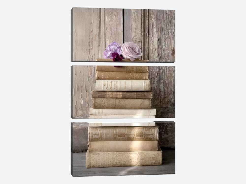 Books III by Symposium Design 3-piece Canvas Print