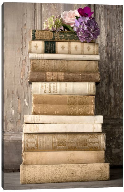 Books II Canvas Art Print