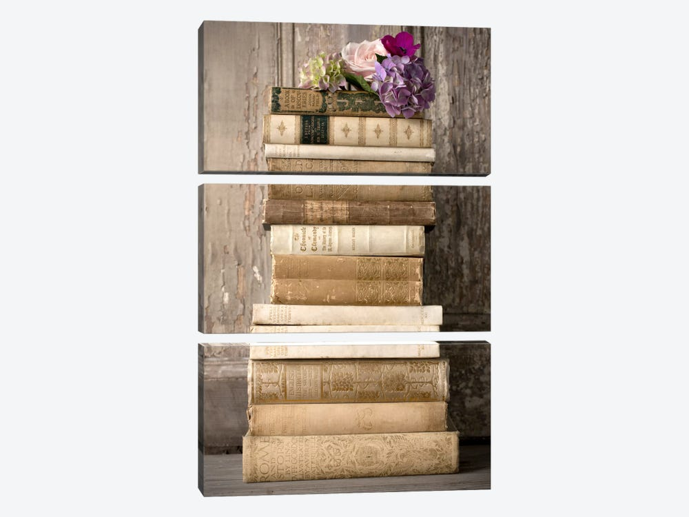 Books II by Symposium Design 3-piece Canvas Artwork