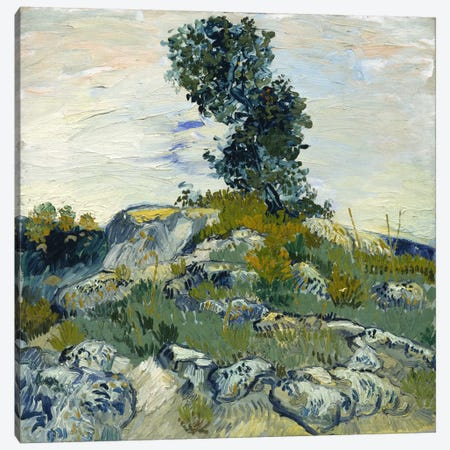 The Rocks Canvas Print #14250} by Vincent van Gogh Canvas Wall Art