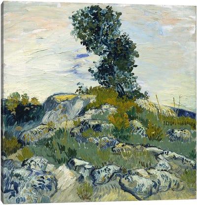The Rocks Canvas Print #14250