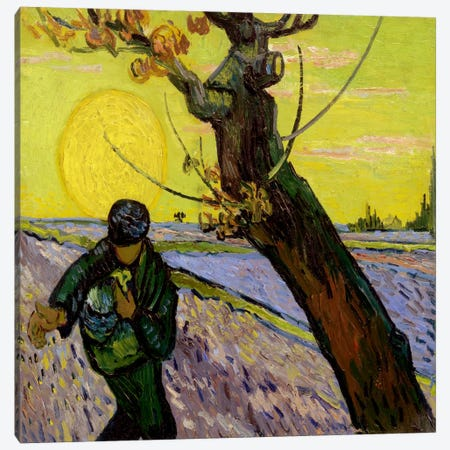 The Sower Canvas Print #14253} by Vincent van Gogh Canvas Art