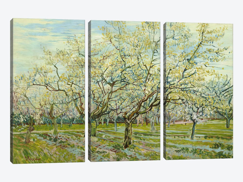 The White Orchard by Vincent van Gogh 3-piece Canvas Artwork