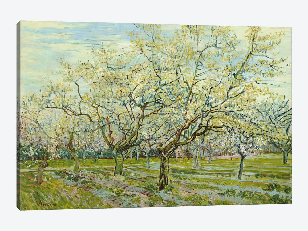 The White Orchard by Vincent van Gogh 1-piece Canvas Art