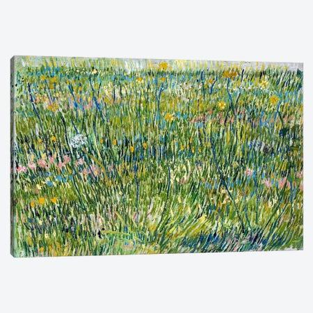 Patch of Grass Canvas Print #14287} by Vincent van Gogh Canvas Artwork