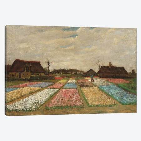 Tulpenfelder (Tulip Fields) Canvas Print #14305} by Vincent van Gogh Art Print