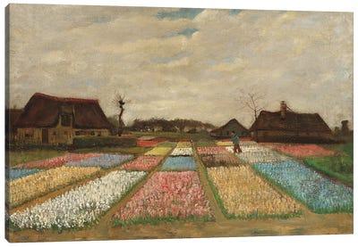 Tulpenfelder (Tulip Fields) Canvas Print #14305