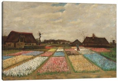 Tulpenfelder (Tulip Fields) Canvas Art Print