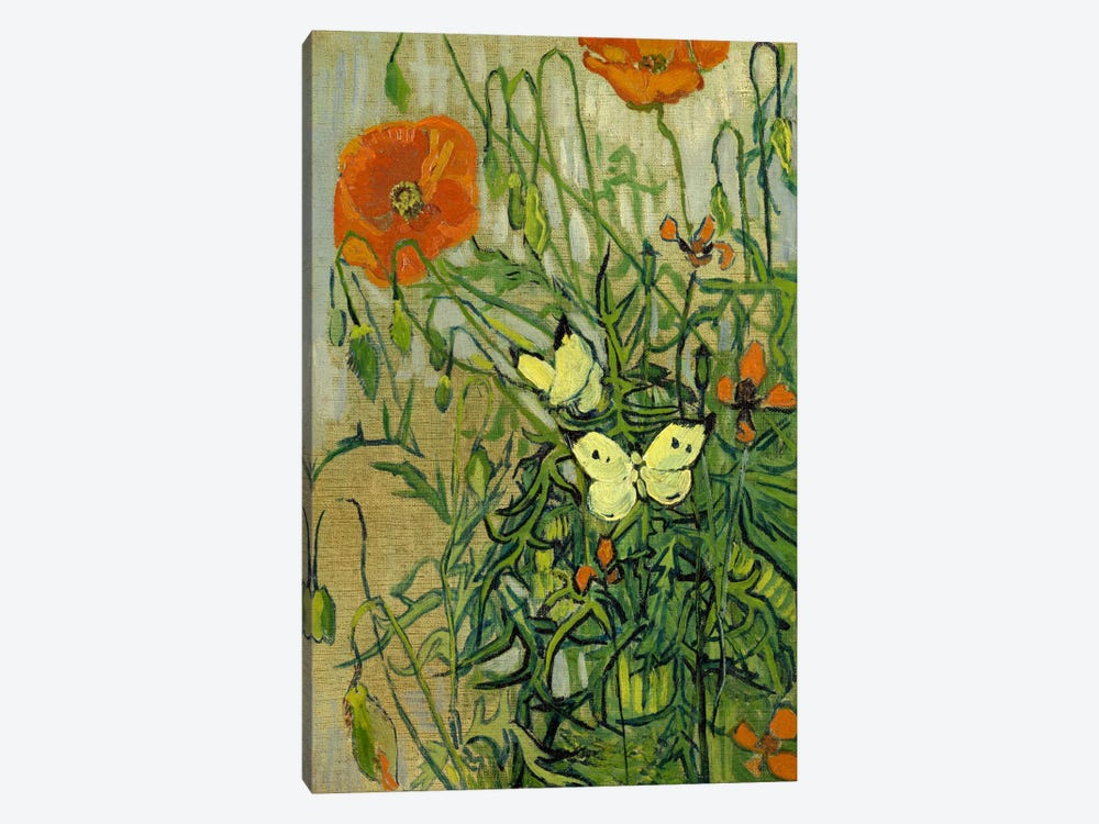 Butterflies and Poppies Canvas Wall Art by Vincent van Gogh | iCanvas