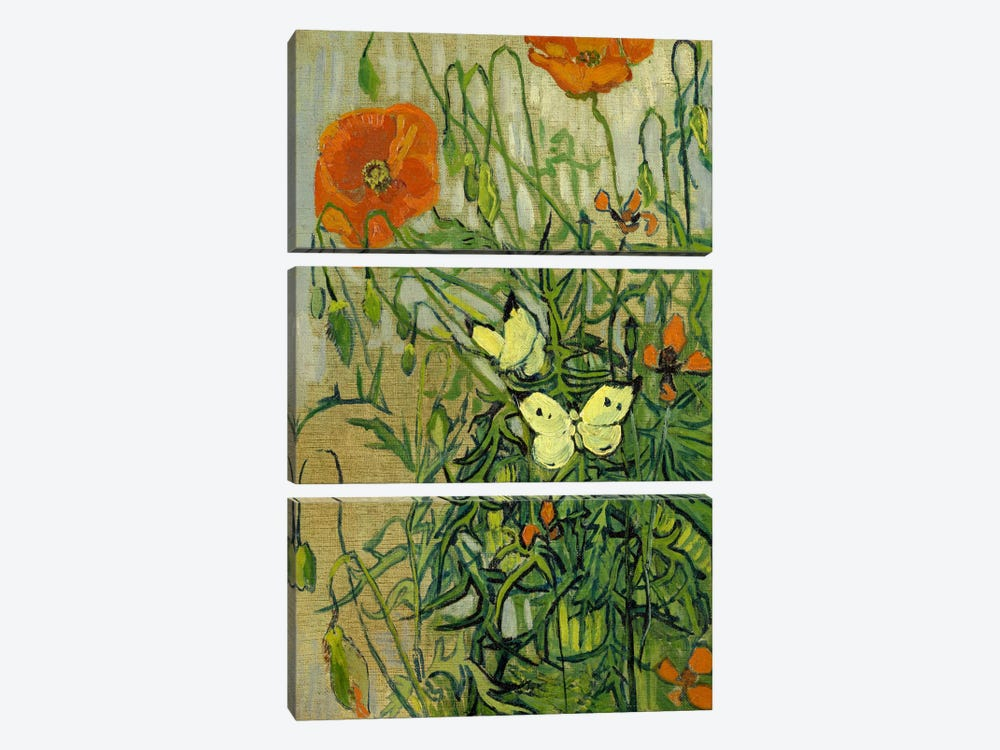 Butterflies and Poppies by Vincent van Gogh 3-piece Canvas Art Print