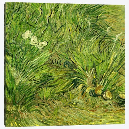 Two White Butterflies Canvas Print #14342} by Vincent van Gogh Canvas Art