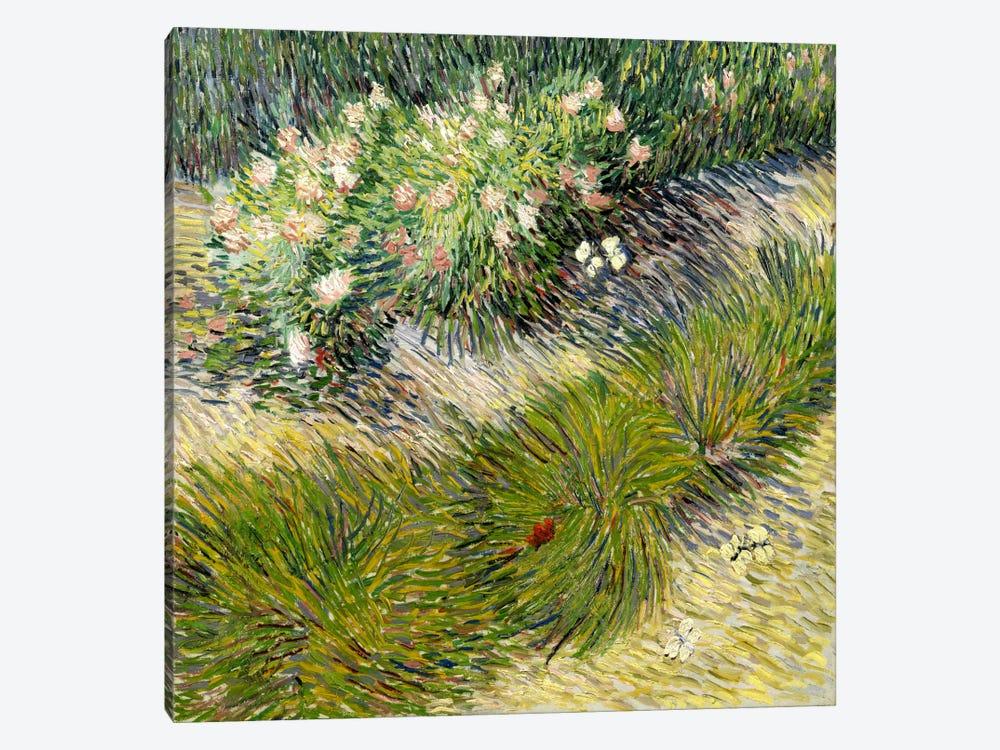 Grass & Butterflies by Vincent van Gogh 1-piece Canvas Wall Art